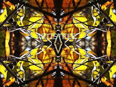 Artistree Bundaleer Forest Collection