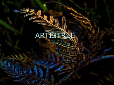 Artistree Grampians Collection